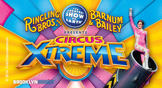 532x290 Circus Xtreme.jpeg